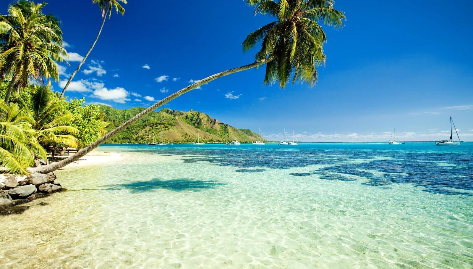 Большой остров Гавайи — красота и большой аппетит