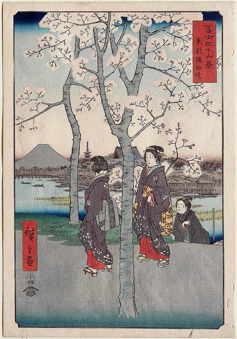 Цветение сакуры: собирательный образ